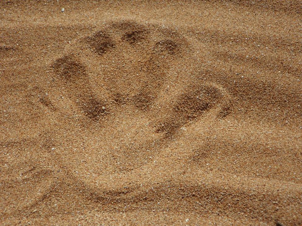 magzat mérete - homokszem